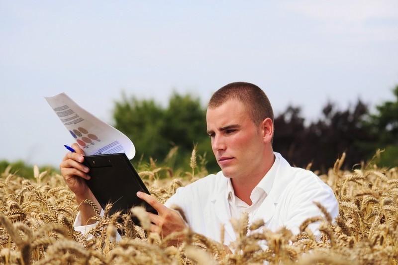 Желающих обучаться в Томском сельскохозяйственном институте стало больше